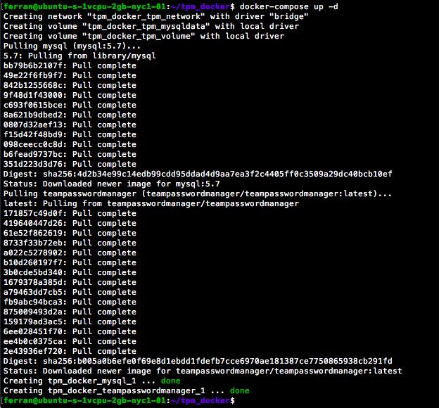 Docker Compose Output