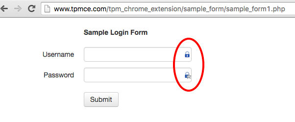 TPM CE sample form